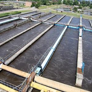 Биометод очистки сточных вод